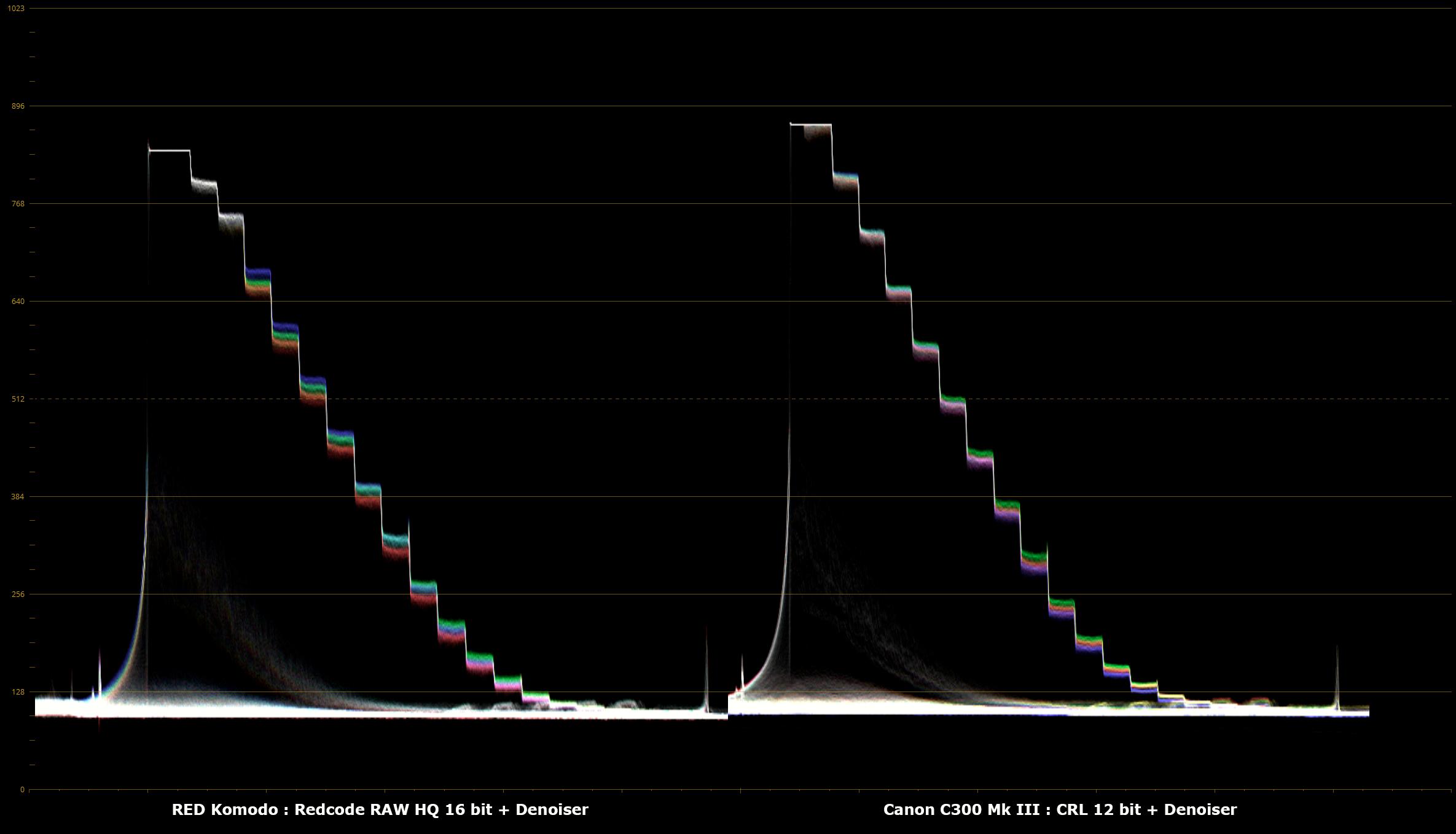 04_RED_Komodo_R3D_HQ_Denoiser_vs_Canon_C300_Mk_III_Cinema_RAW_Light_12_bit_Denoiser.png