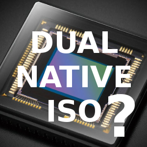 vignette_dual_native_iso.png