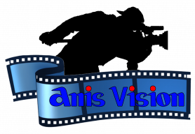 Anis vision