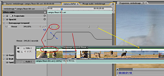how to change video reosultion premeir epro