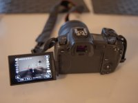Vends Canon hybride EOS R + adaptateur objectif EF