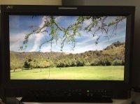 Moniteur Pro JVC DT-E17L4G - Full HD