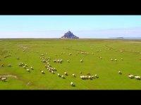 Entreprise drone France - Mont St Michel Drone